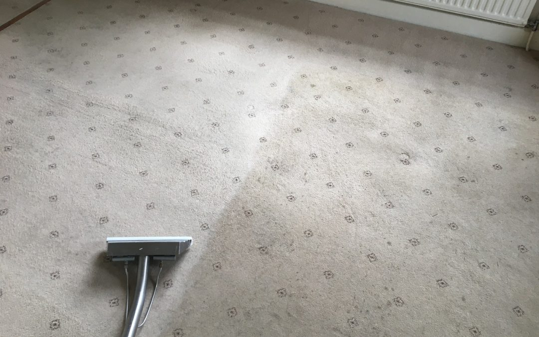 Some good quality carpets bought back to life byThe Professional Cleaning Co.